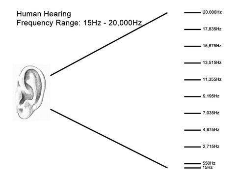 محدوده شنیداری انسان